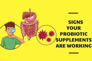 Signs Probiotics Are Working Effectively
