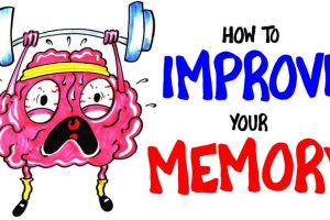 Ways To Improve Your Memory